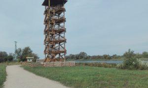 Koka būve. Skatu torņa izbūve un pieguļošās teritorijas labiekārtošana Pilssalā, Jelgavā. Pasūtītājs Jelgavas pašvaldība. Projekts Vertex projekti. Būvnieks SMART ENERGY. Būvuzraudzība Latvijas Būvuzraugs.