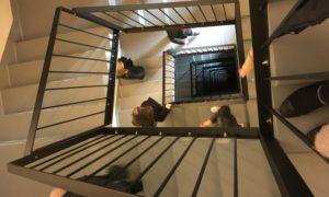 2019.gada 26.septembrī Rīgas Valsts Vācu ģimnāzijas 12.klašu skolnieki un Rīgas Celtniecības koledžas arhitektūras un būvmehānikas studenti pasniedzēja Dina Kopštāla vadībā viesojās vienā no Rīgas ievērojamākajām jaunajām augtsceltnēm Philosophers Residence Raņķa dambī.